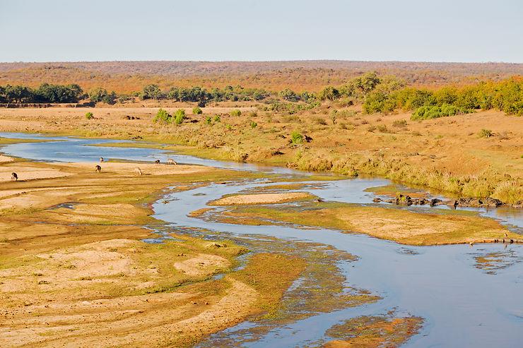 Kruger - Afrique du Sud