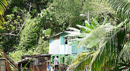 Habitation au coeur du territoire Caraïbe