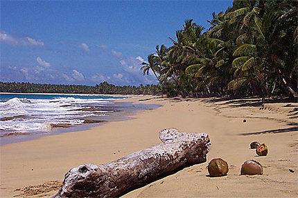 Une plage vierge et naturelle