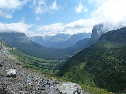 Going to the Sun road - Logan Pass