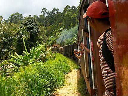 Train entre Ella et Haputale