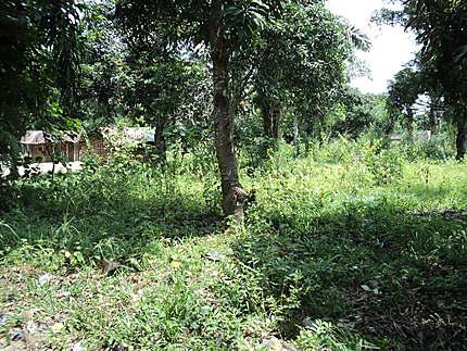 Maison à Mbankana