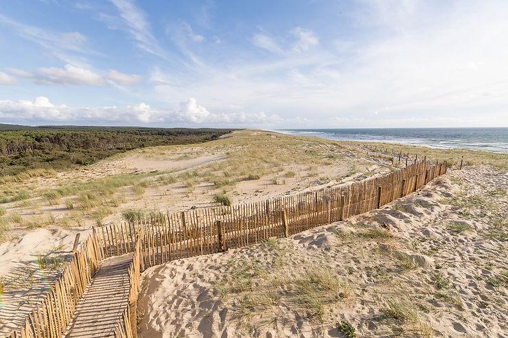 Derrière les pinèdes des Landes, les dunes…