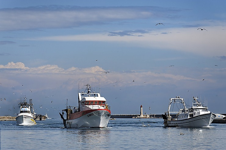 Une cité languedocienne qui a la pêche
