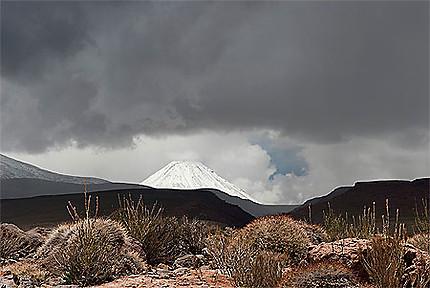 Volcan Miñiques
