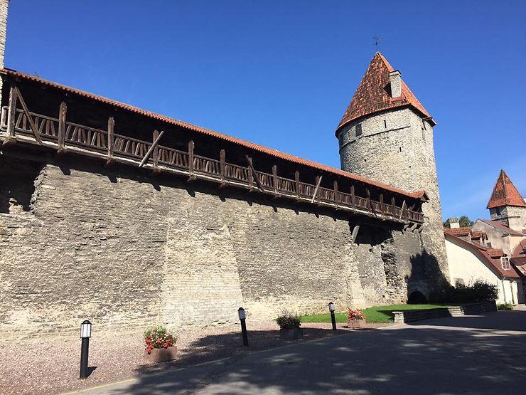 Les remparts médiévaux et leurs tourelles