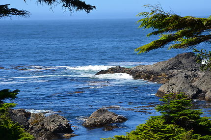 Lighthouse loop, Pacific rim, Ucluelet