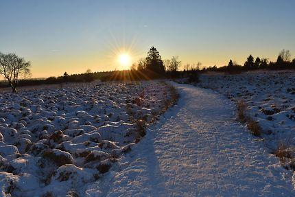 Coucher de soleil hivernal, Hautes-Fagnes