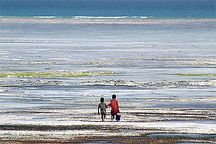 Pêche à Zanzibar