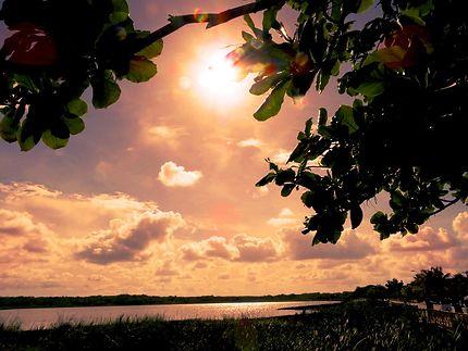 Coucher de soleil au Lac de Coba