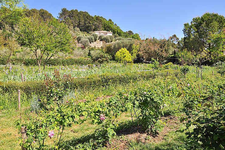 Les jardins du MIP, en pays de Grasse