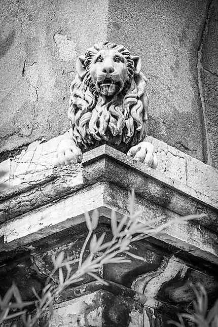 Un des lions de la fontaine d'Hercule