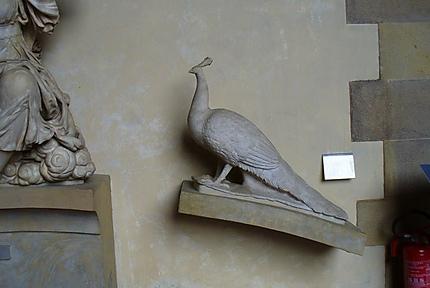 Paon au Museo del Bargello
