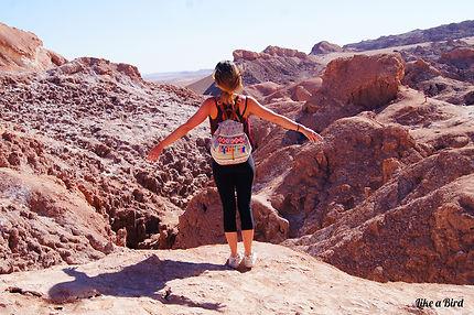 Evasion dans la Vallée de la Lune - Atacama, Chili