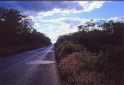 Route sur le plateau des bolovens