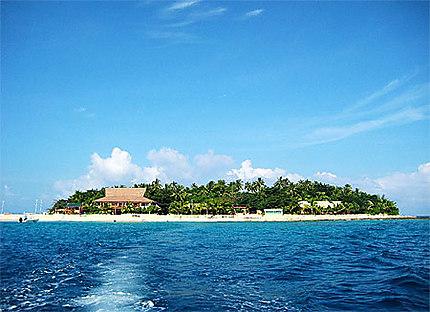 Beachcomber or Party Island