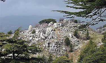 Montagnes du Chouf