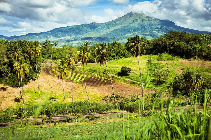 Randonnée - Sur les sentiers de la Martinique