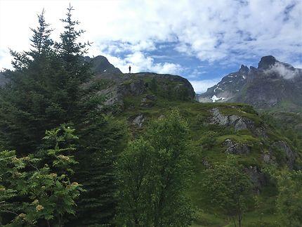 Randonnée à Nusfjord