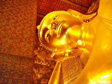 Buddha (a)doré