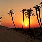 Quel bonheur dans les dunes !