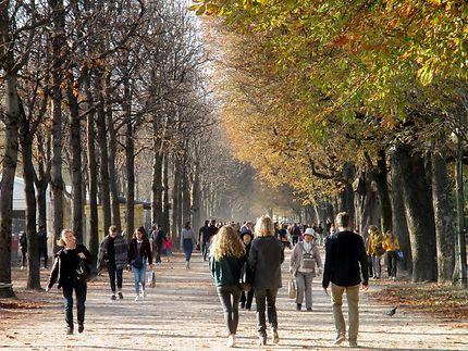 L'automne aux Champs-Élysées