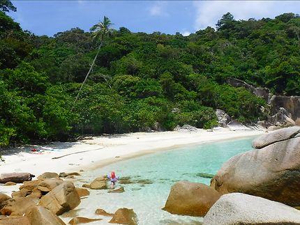 Turtle beach, Malaisie