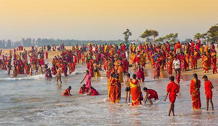 Les couleurs de Pongal, Inde