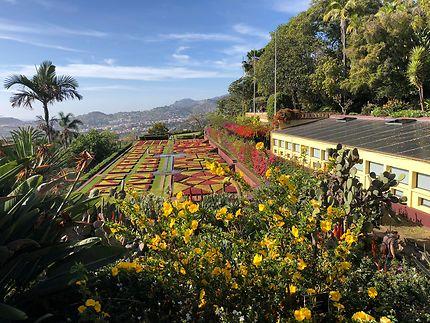 Jardin botanique à Funchal