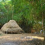 Sur Kaoh Trong
