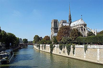 Notre Dame de Paris et quai de Seine