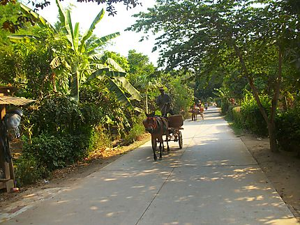 Sur l'île de Koh Paen (face à Kompong Cham)