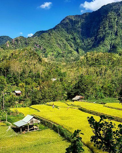 Arrière pays, Amed, Bali
