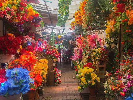 Marcher aux fleurs à Carthagène