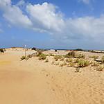 Les dunes de Piscinas