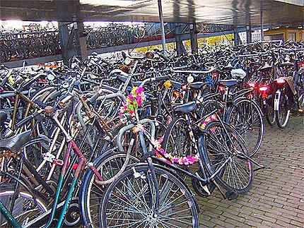 Parking à vélos à Centraal Station