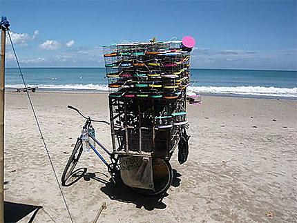 Marchand d'oiseaux sur la plage de kuta