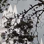 Eglise près de la place Botero