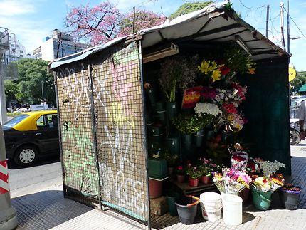 Maisonnette vente de fleurs