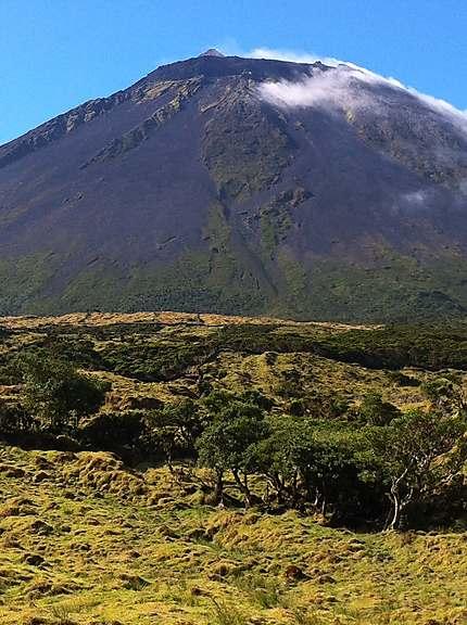 Le Pico 2351 m d'altitude