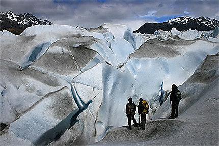 Guides sur le glacier Viedma
