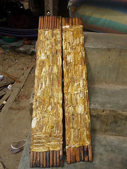 Les bananes sont installées sur du bambou