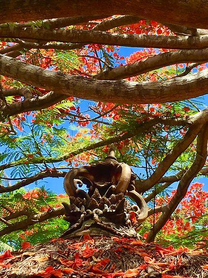 Bali la flamboyante, Kerobokan
