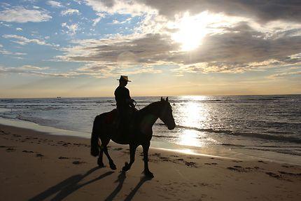 Cavalière au coucher de soleil