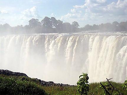 Mon voyage en Afrique du sud