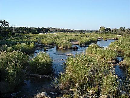 Fleuve dans le Kruger