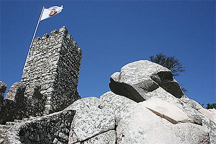 Le château des Maures (Sintra)