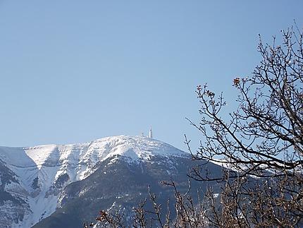Le Ventoux sous la neige de février