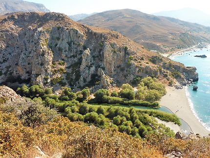 Palmeraie de Preveli en Grèce