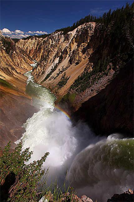 Yellowstone Canyon & Lower Falls